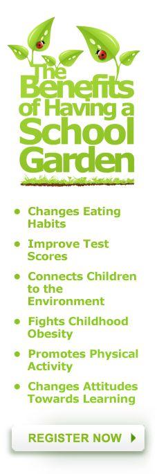 Welcome To Woolly School Garden Woolly School Garden With