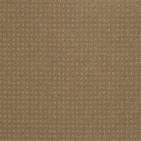 1000+ images about Shaw Anso Nylon Carpet on Pinterest ...