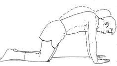 Multidirectional shoulder instability scapular rehab