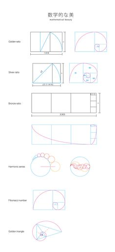 Math and Flower on Pinterest