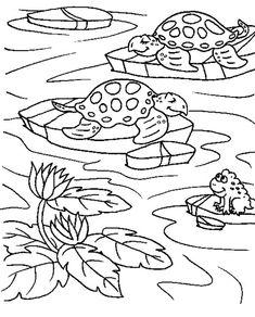 Deciduous Forest Coloring Sheets: Kids Coloring Deciduous