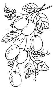 Nice Strawberries Fruits coloring pages simple for kids