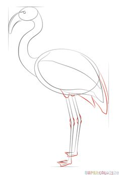 How to draw a Rooster step by step. Drawing tutorials for