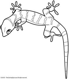 Lizard pattern. Use the printable outline for crafts