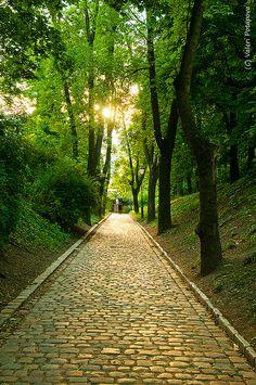 path in park, Vysehr