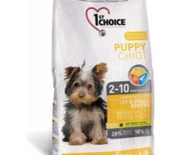 Sedang Mencari Makanan Untuk Njing Anda Kami Memiliki Berbagai Varian Makanan Anjing Anda Dengan Kualitas