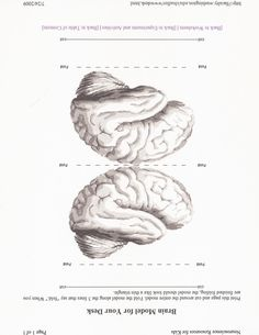 This is a black and white template for another Brain Hat