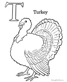 Turkey, Turkey coloring pages and Turkey pattern on Pinterest