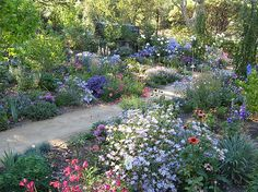 Country Cottage Garden Beautiful Traditional English Country