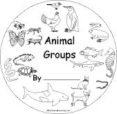1000+ images about Science- Animal Groups on Pinterest