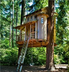 Ladder Ideas For Tree Houses House Interior