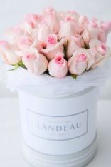Image result for landeau flowers vancouver