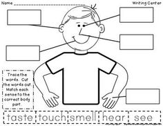 five sense worksheet: NEW 519 FIVE SENSES WORKSHEET FOR