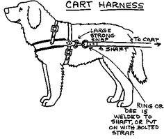 Lines and Harnesses for Dog Sledding, Alaska Iditarod
