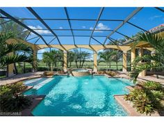 Pool Pool Cage Plants And Trees Lanai Landscaping