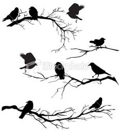 Swallow Silhouette Clipart Bird Silhouette by