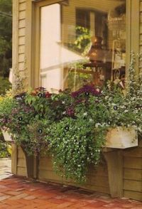 1000+ images about Courtyard landscape on Pinterest ...