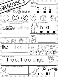 Fall Counting Pages Numbers 1-20, Common Core Aligned, $1