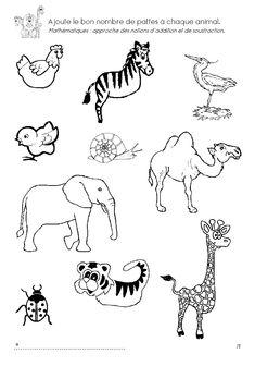 1000+ images about Onderwijs thema dieren on Pinterest