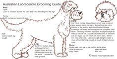 1000+ images about Trimschema / Grooming chart on