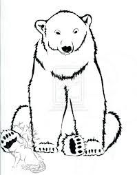 How to Draw a Polar Bear, Step by Step, Arctic Animals