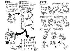 Homeschool, Biology and Memories on Pinterest