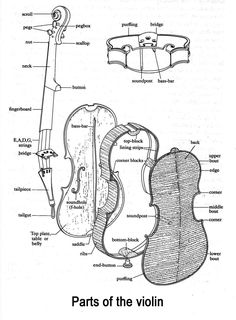 1000+ images about MUSIC-----Violin----Learning and