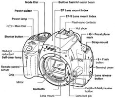 Canon, Eos and Cheat sheets on Pinterest