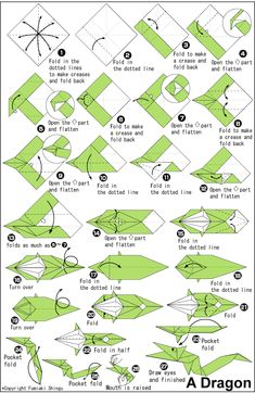 carambola flower origami diagram jl wiring 1000+ images about on pinterest | dragon, instructions and fish