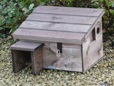 How To Build A Wood Hedgehog House Gardens Guinea Pigs And Facts