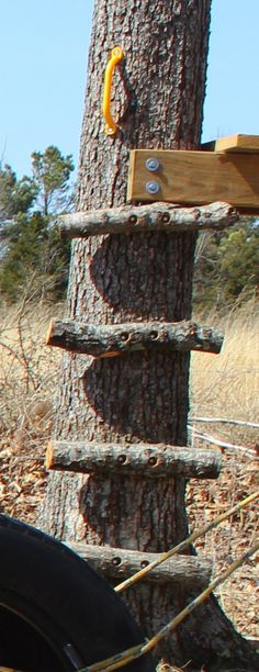 Tree House Stump House Made From Free Pallets YouTube Tarp