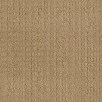 1000+ images about carpet on Pinterest | Mohawk carpet ...