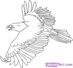 1000+ images about EAGLE- DRAWING AND PAINTING on