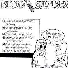 White Blood Cells; Study Tips!! (Agranulocytes=Monocytes