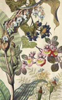 1000+ ideas about Art Deco Wallpaper on Pinterest | Art ...