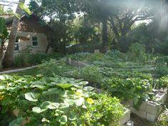 Florida Gardening Ideas Garden Design Garden Design With Florida