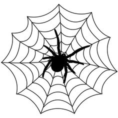 Spider, Spider webs and Coloring on Pinterest