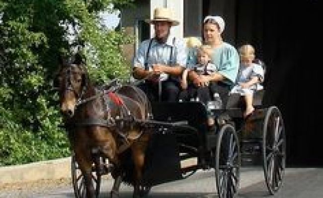 Amish Girls Are So Cute All Things Beautiful