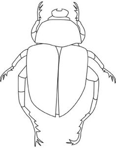 Beetle pattern. Use the printable outline for crafts
