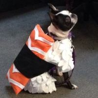 1000+ ideas about Sushi Costume on Pinterest | Costumes ...