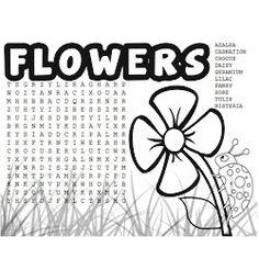 Activities: trivia, quizzes, crosswords, word search
