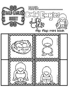 This Thematic Unit contains different sets of Printables