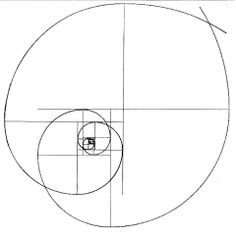 Platonic solid, Solid geometry and Geometry on Pinterest