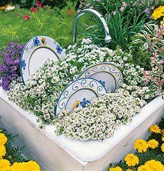 Mini Belfast Sink Alpine Garden Garden Ideas Pinterest