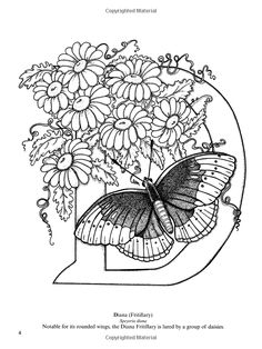 Coloring for adults, The secret garden and Butterflies on