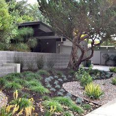 Landscape Mid Century Modern Garden Design Ideas Pictures
