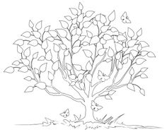 Tree outline, Oak tree and Trees on Pinterest