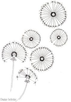 Sunflowers, Sunflower seeds and Seeds on Pinterest