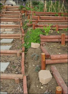 Veggie Garden To Replace Ugly Slope Ground Cover Backyard Ideas