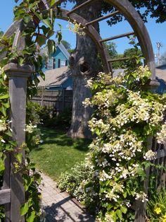 Gate Garden Of Ideas Ridgefield CT Not My Garden Things I